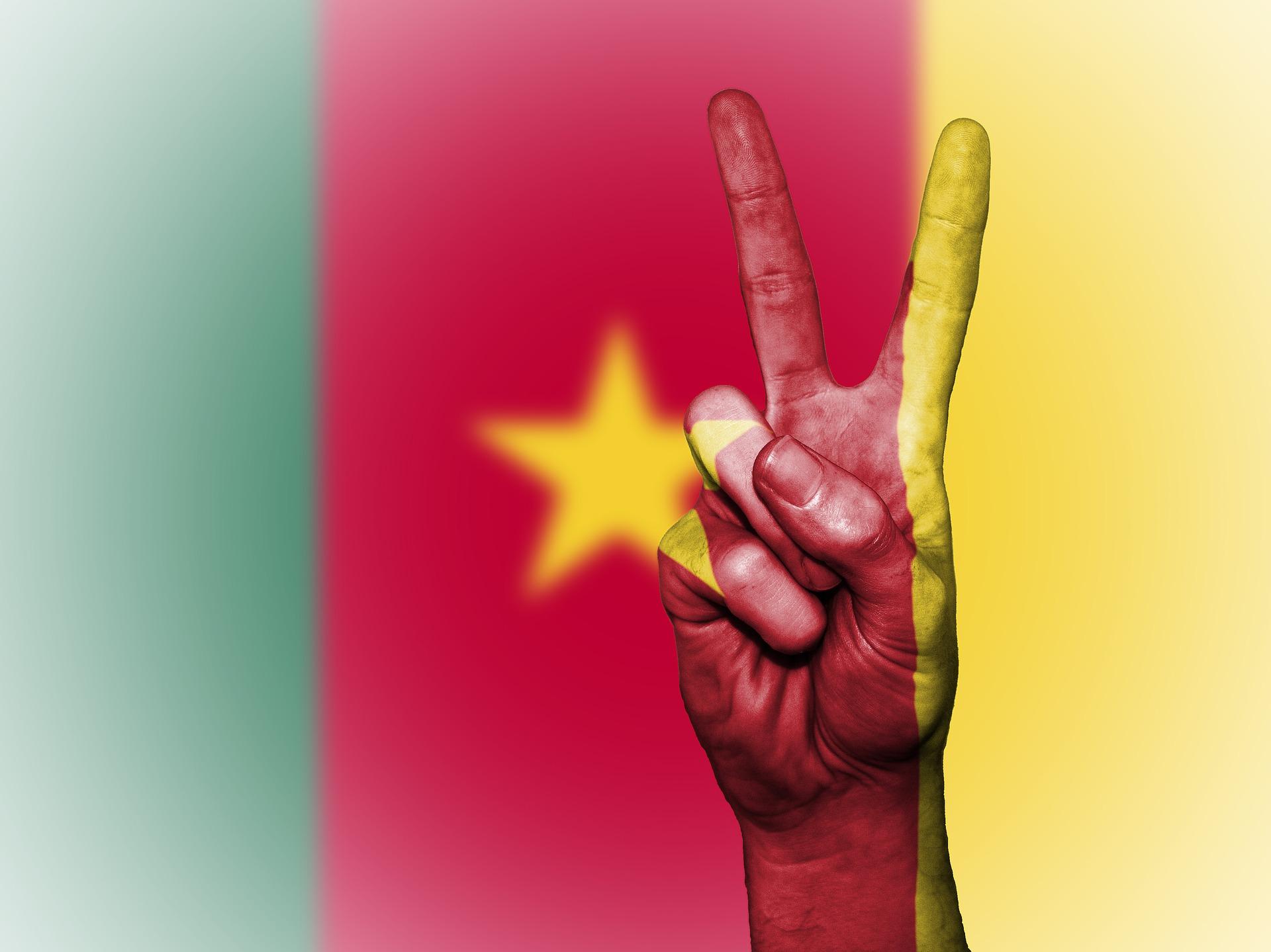 Cheap international calls to Cameroon